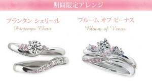 mariage sakura_price2